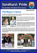 Link to a PDF of the Summer 2021 Newsletter